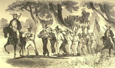 A slave coffle on the Natchez Trace. the slaves in a coffle were chained and driven along together.